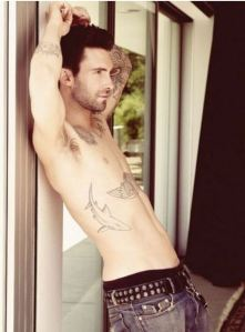Yes, this shirtless photo of Adam Levine is essential to this blog post...you're welcome